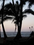 Maui Maniacs