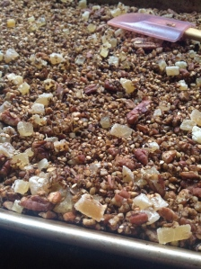 Gingerbread Granola Detail